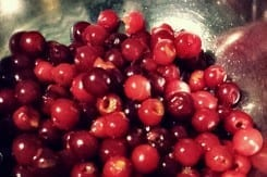 The World's Best Cherry Pitter