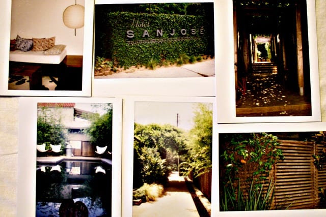 Some Polaroids we took on the grounds. A picture of pictures, I know. So meta.