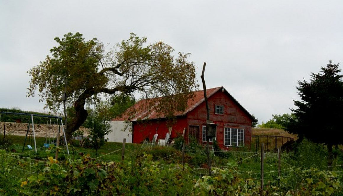 willoway farm