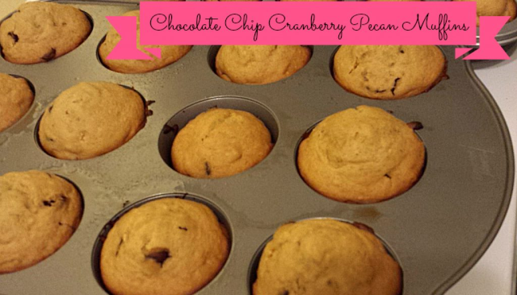 chocolate chip cranberry pecan muffins