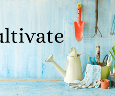 2020 focus word: Cultivate