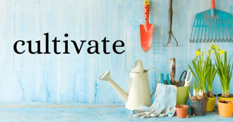 2020 focus word: Cultivate