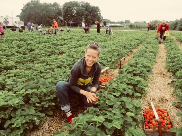 Annie Wegner LeFort picking strawberries in a field